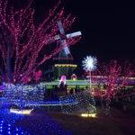 茨城県南で、有名な水郷桜イルミネーション! 土浦市霞ヶ浦総合公園で実施しているので行ってみた!